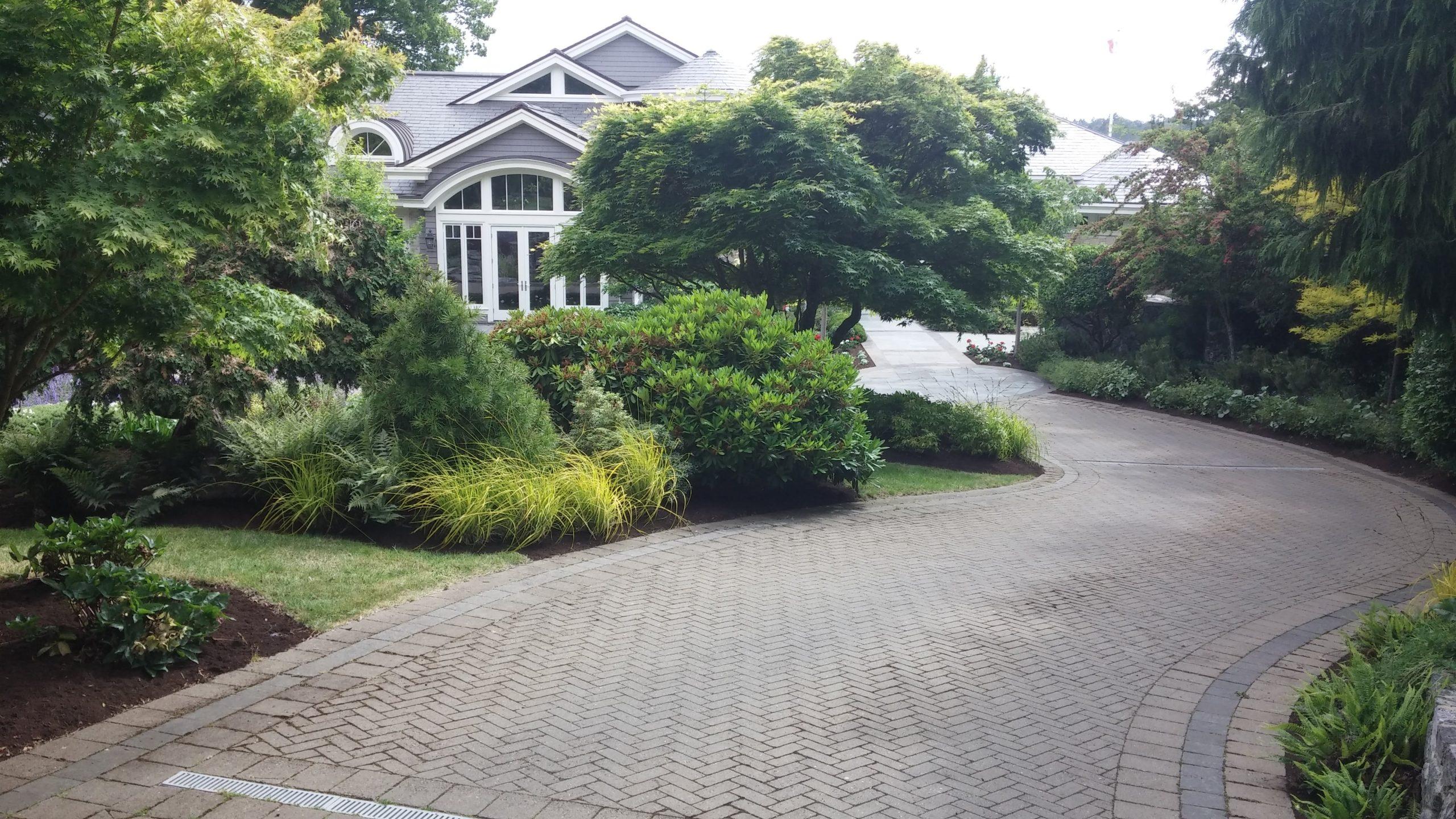 Saanich, BC Tree Services