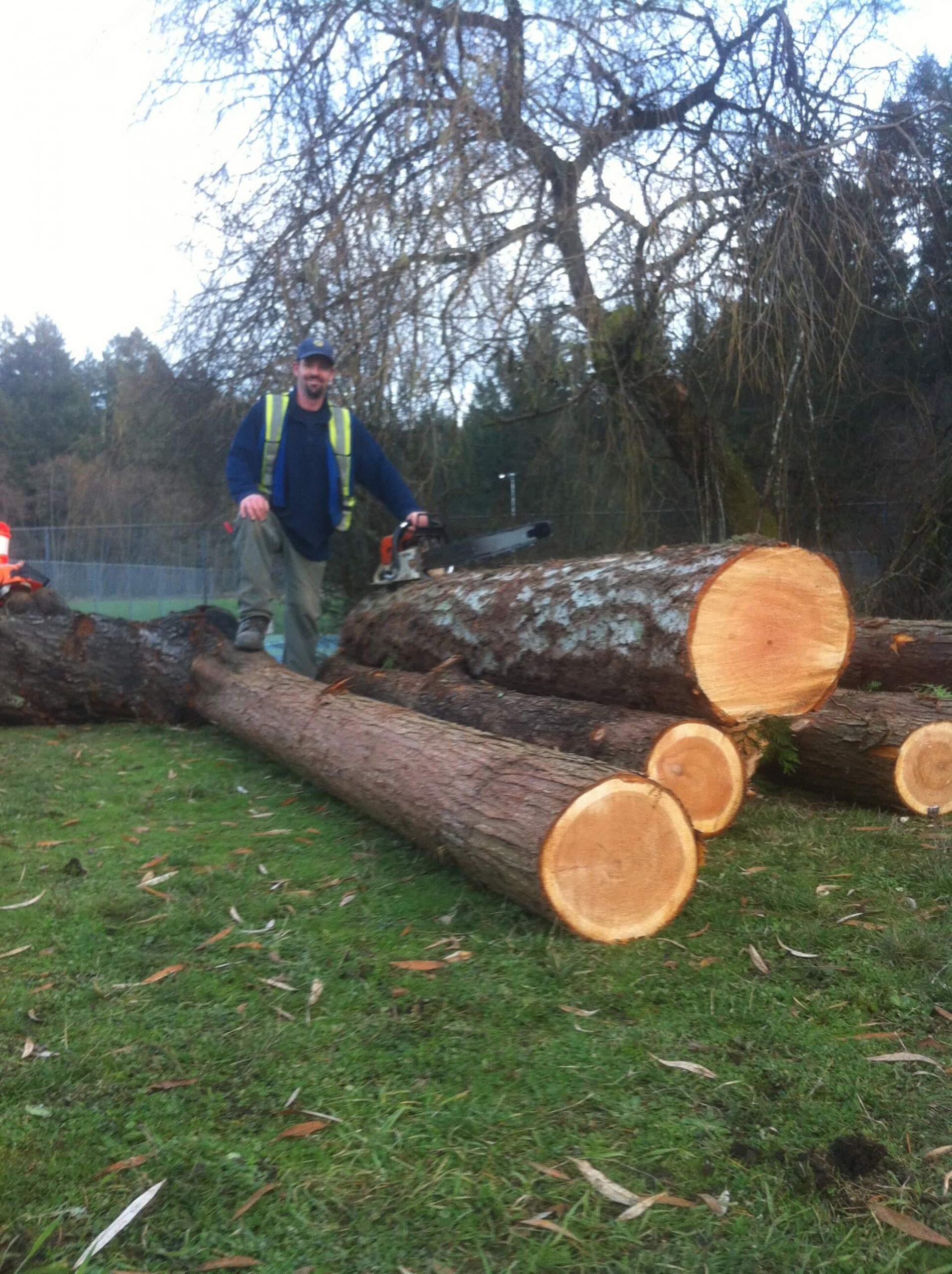 Victoria, BC Tree Service